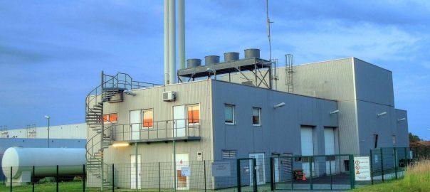 'Nederland moet geen biomassacentrales meer bouwen'